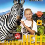 Podróż z Nelą Małą Reporterką przez dżunglę, morza i oceany!