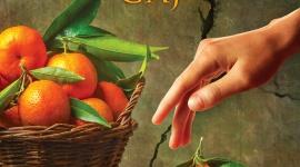 """CYTRUSOWY GAJ LIFESTYLE, Książka - """"Cytrusowy gaj"""" pióra Katarzyny Kieleckiej, który ukaże się 7 lipca nakładem Wydawnictwa Szara Godzina, to opowieść o różnych odcieniach przyjaźni i miłości, o rozczarowaniu i nadziei, a także o tym jak wiele sekretów, wyzwań i niespodzianek niesie ze sobą życie."""